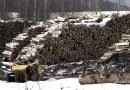 Mieszkańcy Ustrzyk Dolnych protestują przeciwko budowie fabryki wypału węgla drzewnego
